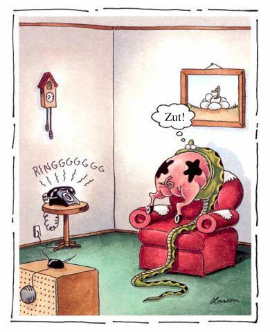 Maudit téléphone